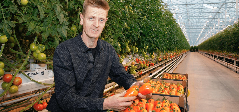 John Vermeiren van Tomeco tomaten